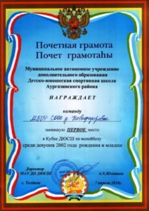 итоги участия на кубок ДЮСШ по волейболу_2