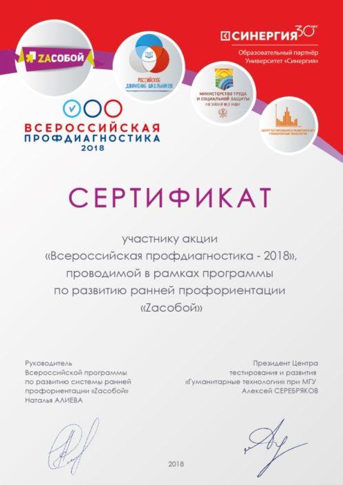 сертификат участия в профориентировании